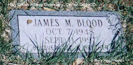 BLOOD, JAMES M. - Fremont County, Colorado   JAMES M. BLOOD - Colorado Gravestone Photos