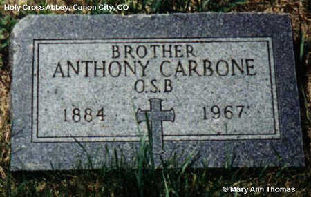 CARBONE, ANTHONY - Fremont County, Colorado | ANTHONY CARBONE - Colorado Gravestone Photos