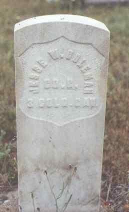 COLEMAN, JESSEE W. - Fremont County, Colorado | JESSEE W. COLEMAN - Colorado Gravestone Photos