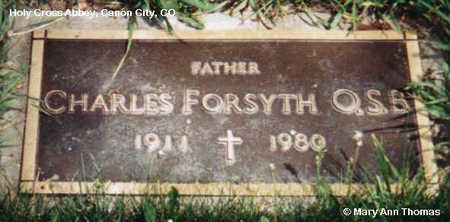FORSYTH, CHARLES - Fremont County, Colorado | CHARLES FORSYTH - Colorado Gravestone Photos