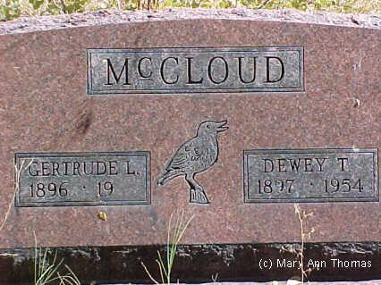 MCCLOUD, DEWEY T. - Fremont County, Colorado | DEWEY T. MCCLOUD - Colorado Gravestone Photos