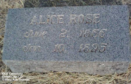 ROSE, ALICE - Fremont County, Colorado | ALICE ROSE - Colorado Gravestone Photos
