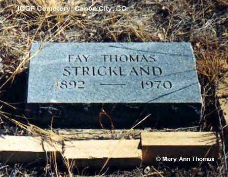 STRICKLAND, FAY THOMAS - Fremont County, Colorado   FAY THOMAS STRICKLAND - Colorado Gravestone Photos