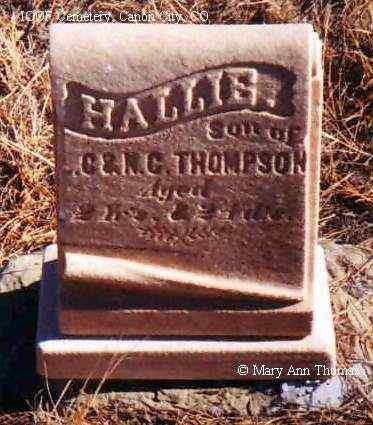 THOMPSON, HALLIS - Fremont County, Colorado | HALLIS THOMPSON - Colorado Gravestone Photos