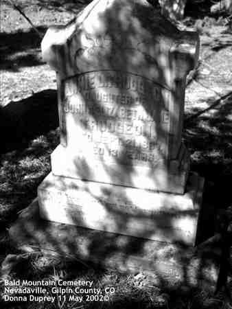 TRUDGEON, ANNIE L. - Gilpin County, Colorado | ANNIE L. TRUDGEON - Colorado Gravestone Photos