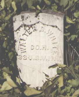 WHITE, WALTER B. - Gunnison County, Colorado | WALTER B. WHITE - Colorado Gravestone Photos