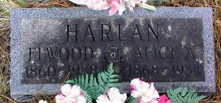 HARLAN, ELWOOD - Lake County, Colorado | ELWOOD HARLAN - Colorado Gravestone Photos