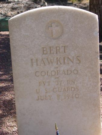 HAWKINS, ALBERT HUGO - Lake County, Colorado | ALBERT HUGO HAWKINS - Colorado Gravestone Photos