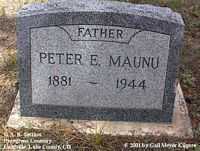 MAUNU, PETER E. - Lake County, Colorado | PETER E. MAUNU - Colorado Gravestone Photos