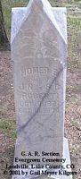 ROBERTI, HOMER E. - Lake County, Colorado | HOMER E. ROBERTI - Colorado Gravestone Photos