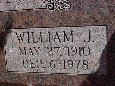 SLAVIN, WILLIAM JAMES - Lake County, Colorado | WILLIAM JAMES SLAVIN - Colorado Gravestone Photos