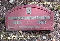 TAGGARET, JAMES - Lake County, Colorado | JAMES TAGGARET - Colorado Gravestone Photos