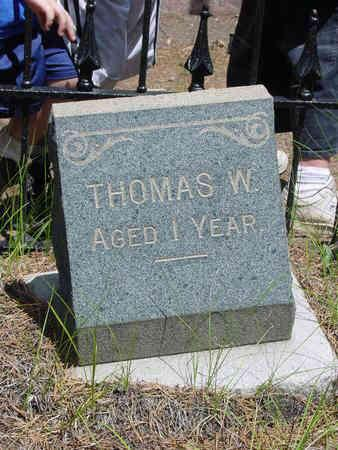 WALSH, THOMAS W - Lake County, Colorado | THOMAS W WALSH - Colorado Gravestone Photos