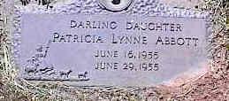 ABBOTT, PATRICIA LYNNE - La Plata County, Colorado   PATRICIA LYNNE ABBOTT - Colorado Gravestone Photos