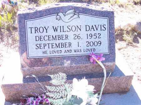 DAVIS, TROY WILSON - La Plata County, Colorado | TROY WILSON DAVIS - Colorado Gravestone Photos