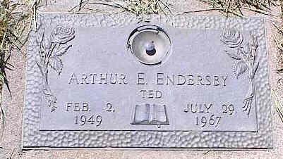 ENDERSBY, ARTHUR E. - La Plata County, Colorado | ARTHUR E. ENDERSBY - Colorado Gravestone Photos