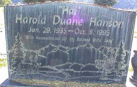 HANSON, HAROLD DUANE - La Plata County, Colorado | HAROLD DUANE HANSON - Colorado Gravestone Photos