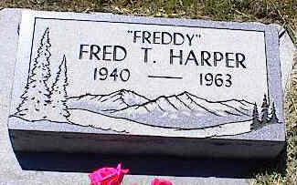 HARPER, FRED T. - La Plata County, Colorado | FRED T. HARPER - Colorado Gravestone Photos