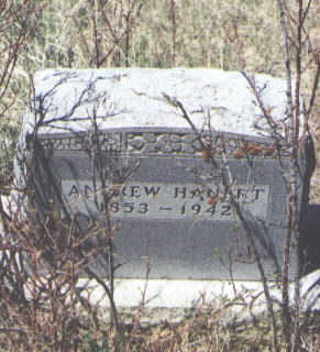 HAUERT, ANDREW - La Plata County, Colorado | ANDREW HAUERT - Colorado Gravestone Photos