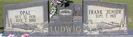 LUDWIG, OPAL - La Plata County, Colorado | OPAL LUDWIG - Colorado Gravestone Photos