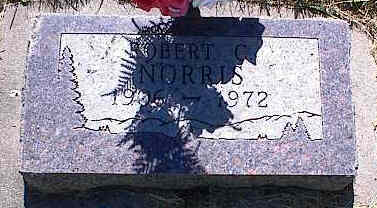 NORRIS, ROBERT C. - La Plata County, Colorado | ROBERT C. NORRIS - Colorado Gravestone Photos
