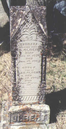 OLBERT, OTTO F. - La Plata County, Colorado | OTTO F. OLBERT - Colorado Gravestone Photos