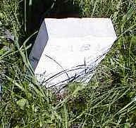PARKS, BABY - La Plata County, Colorado   BABY PARKS - Colorado Gravestone Photos