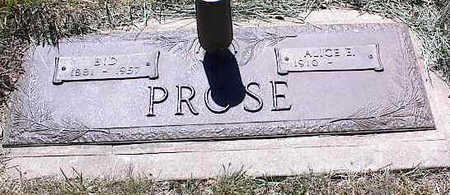 PROSE, ALICE E. - La Plata County, Colorado | ALICE E. PROSE - Colorado Gravestone Photos