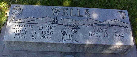 WELLS, JIMMIE - La Plata County, Colorado | JIMMIE WELLS - Colorado Gravestone Photos
