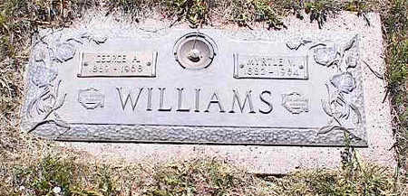 WILLIAMS, MYRTLE V. - La Plata County, Colorado | MYRTLE V. WILLIAMS - Colorado Gravestone Photos