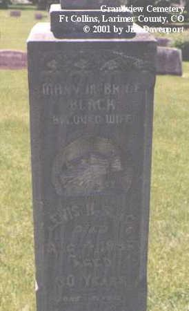 BLACK, LEWIS H. - Larimer County, Colorado   LEWIS H. BLACK - Colorado Gravestone Photos
