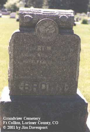 BROWN, HERBERT W. - Larimer County, Colorado | HERBERT W. BROWN - Colorado Gravestone Photos
