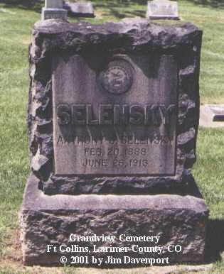SELENSKY, ANTHONY J. - Larimer County, Colorado | ANTHONY J. SELENSKY - Colorado Gravestone Photos