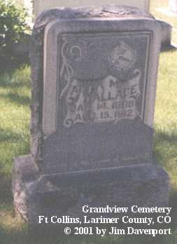 WALLACE, ANNA M. - Larimer County, Colorado | ANNA M. WALLACE - Colorado Gravestone Photos