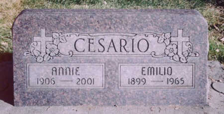 CESARIO, EMILIO - Mesa County, Colorado | EMILIO CESARIO - Colorado Gravestone Photos