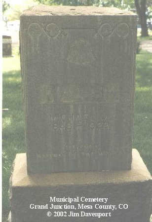 WALSH, MICHAEL J. - Mesa County, Colorado | MICHAEL J. WALSH - Colorado Gravestone Photos