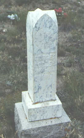 DOOLEY, BRIDGET - Mineral County, Colorado | BRIDGET DOOLEY - Colorado Gravestone Photos