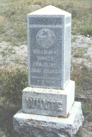 WHYTE, WILLIAM H. - Mineral County, Colorado | WILLIAM H. WHYTE - Colorado Gravestone Photos