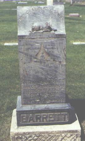 BARRETT, ANTHONY - Montezuma County, Colorado | ANTHONY BARRETT - Colorado Gravestone Photos