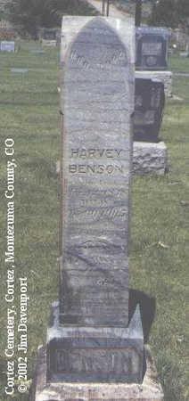 BENSON, HARVEY - Montezuma County, Colorado | HARVEY BENSON - Colorado Gravestone Photos