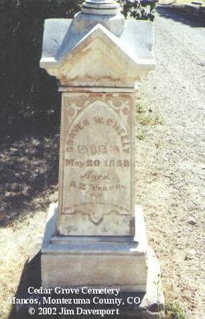CHEELY, GRAVES W. - Montezuma County, Colorado | GRAVES W. CHEELY - Colorado Gravestone Photos