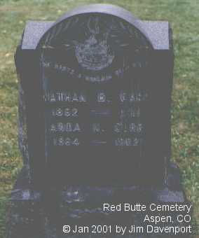 CARR, NATHAN B. - Pitkin County, Colorado | NATHAN B. CARR - Colorado Gravestone Photos