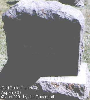 HAMILTON, DAVID C. - Pitkin County, Colorado | DAVID C. HAMILTON - Colorado Gravestone Photos