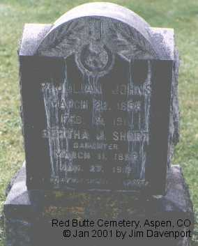 JOHNS, P. JULIAN - Pitkin County, Colorado | P. JULIAN JOHNS - Colorado Gravestone Photos
