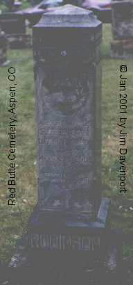 ROBINSON, ALBERT JAMES - Pitkin County, Colorado | ALBERT JAMES ROBINSON - Colorado Gravestone Photos