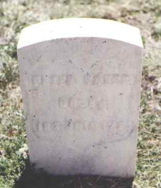 SAUER, PETER - Pueblo County, Colorado | PETER SAUER - Colorado Gravestone Photos