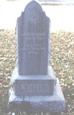 LEWIS, JOHN DEMPSTER - Rio Grande County, Colorado | JOHN DEMPSTER LEWIS - Colorado Gravestone Photos