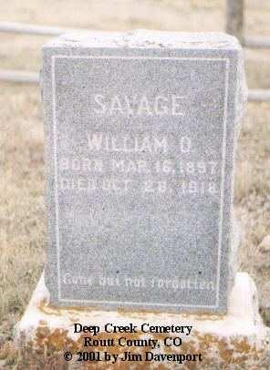 SAVAGE, WILLIAM O. - Routt County, Colorado | WILLIAM O. SAVAGE - Colorado Gravestone Photos