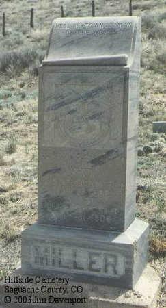 MILLER, ELMER ELLSWORTH - Saguache County, Colorado | ELMER ELLSWORTH MILLER - Colorado Gravestone Photos