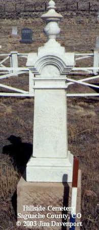 ROSS, WILLIAM N. - Saguache County, Colorado | WILLIAM N. ROSS - Colorado Gravestone Photos